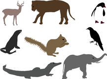 Animal shapes Royalty Free Stock Photography