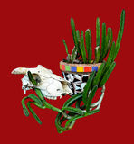 Animal (sheep) skull with cactus in a Mexican style mosaic pot Stock Images
