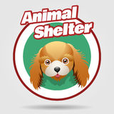 Animal Shelter emblem. With puppy face. Animal rights protection concept. Hotel for dogs badge. Vector illustration Isolated on white background Stock Photography
