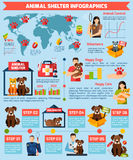 Animal shelter infographics Royalty Free Stock Images