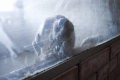 Animal shelter. Kiev. Stock Images