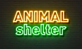 Animal shelter neon sign on brick wall background. Animal shelter neon sign on brick wall background Stock Images