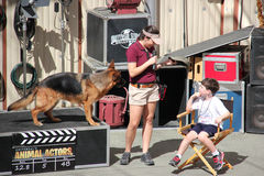Animal Show at Universal Studios Hollywood. Los Angeles, California, USA - March 12, 2015: The trainer and trained dog are performing in Animal Show at Universal Stock Image