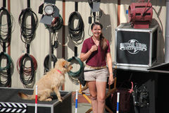 Animal Show at Universal Studios Hollywood. Los Angeles, California, USA - October 10, 2014: The trainer and trained dog are performing in Animal Show at Royalty Free Stock Images