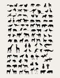 Animal Silhouette Collection Royalty Free Stock Image