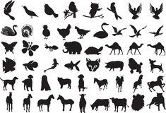 Animal Silhouettes. Vector Illustration of over 50 Animal Silhouettes Royalty Free Stock Photos