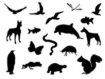 Animal silhouettes Royalty Free Stock Image