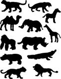 Animal Silhouettes. A vector illustration of some animal silhouettes isolated over a white background Stock Photos