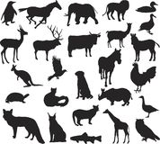 Animal silhouettes Stock Images