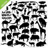 Animal silhouettes vector. Set of animals silhouettes vector Royalty Free Stock Photos
