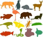 Animal_silhouettes06 Fotografía de archivo