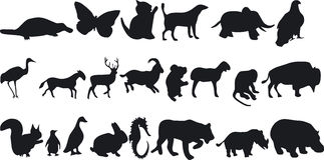 Animal Silouettes Stock Photo