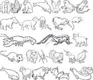 Animal Silouettes Royalty Free Stock Image