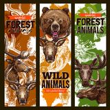 Animal sketch banner set with bear, deer and elk. Animal sketch banner set of forest wildlife. Wild bear, deer, elk, reindeer and moose animal sketch poster royalty free illustration