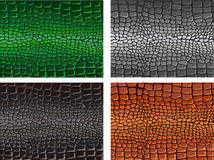 Animal skin Stock Photo