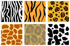 Animal skin Stock Photos