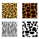 Animal skin. A collection of seamless animal prints Royalty Free Stock Photography