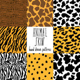 Animal skin hand drawn texture Royalty Free Stock Photography