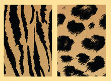Animal Skin Royalty Free Stock Photos