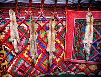 Animal skin in Kazakh yurt interior Stock Photography