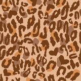 Animal Skin Pattern Royalty Free Stock Image