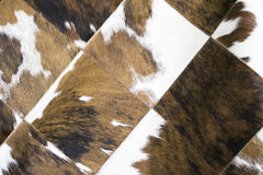 Animal Skin Rug Stock Photo