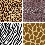 Animal skin seamless pattern collection. Zebra, leopard, snake, giraffe skin seamless pattern collection Stock Photos