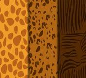 Animal skin seamless pattern set. Giraffe, leopard, zebra fills Stock Image