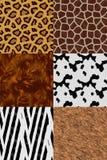 Animal skin seamless pattern set. Leopard, giraffe, bear, cow, zebra, brown rabbit skins Royalty Free Stock Image