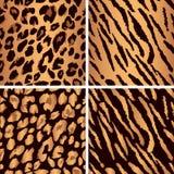 Animal skin seamless pattern set. Set leopard. Set leopard print pattern. Set tiger print pattern. Set a jaguar print pattern. Set texture yellow-orange, bronze Royalty Free Stock Photography