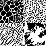 Animal skin seamless patterns Royalty Free Stock Images