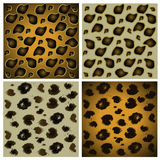 Animal skin textures Stock Photography