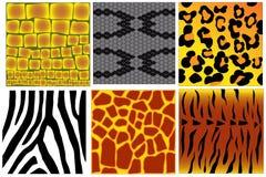 Animal skin textures Royalty Free Stock Photo