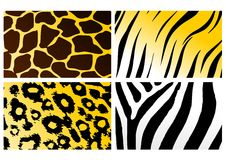 Animal skins Royalty Free Stock Image