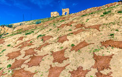 Animal skins drying underneath Marinid Tombs in Fes, Morocco Royalty Free Stock Photography