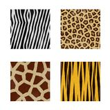 Animal skins patterns Stock Images