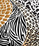 Animal skins. Vector illustration. Vector illustration depicting various animal skins Stock Illustration