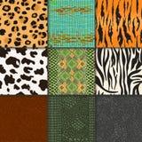 Animal skins vector pattern seamless animalistic skinny textured backdrop of wild skinning natural fur illustration. Wildlife background set Stock Photo