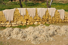 Animal skins and wool drying outside Stock Images