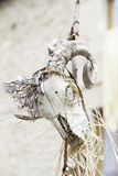 Animal skull in a festival of witchcraft. Detail of a halloween decoration Royalty Free Stock Image