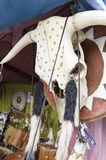 Animal Skull india Royalty Free Stock Image