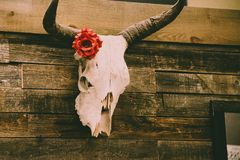 Animal Skull on Wall With Red Rose Decor Royalty Free Stock Photography