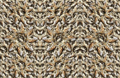 Animal Skulls Background. Digital composite of my photographs of the skulls of various mammals Royalty Free Stock Photography