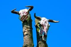Animal skulls on totem Royalty Free Stock Photos