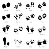 Animal Spoor Footprints Icon Vector Royalty Free Stock Photography