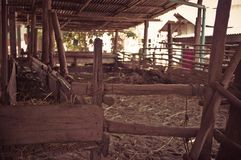 Animal stalls. In the provinces Royalty Free Stock Photos
