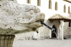 Animal stone fountain Stock Photography