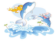 Animal swimming with dolphins Stock Photography