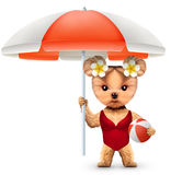 Animal in swimsuit with umbrella holding beachball Stock Image
