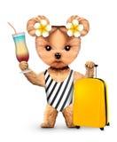Animal in swimwear holding travel luggage Royalty Free Stock Image